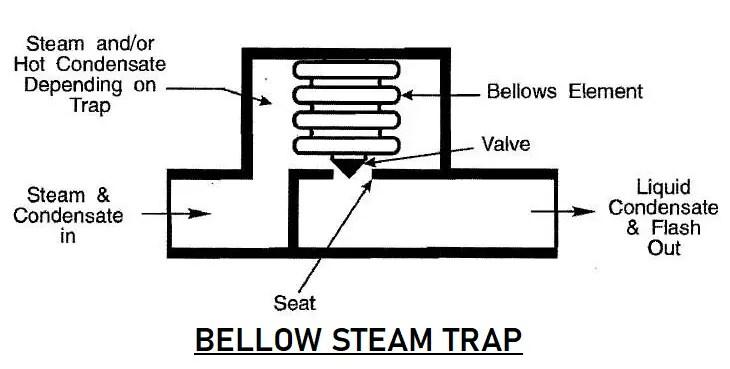 Bellow steam trap