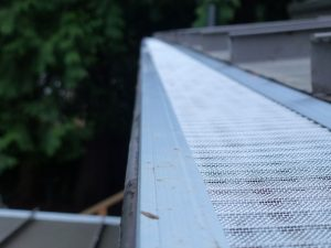 Roof and Gutter Cleaning in Renton