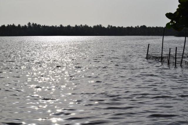 Backwaters beauty