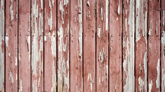 Rotting Wood Fence