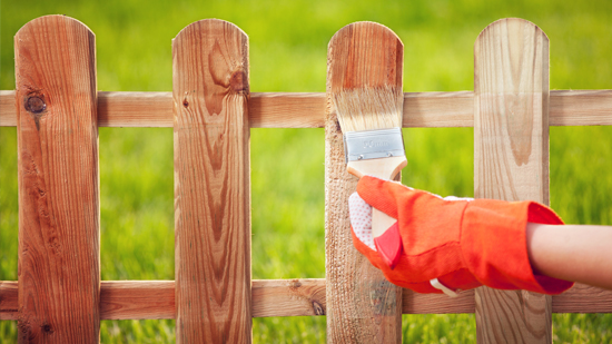 Stain A Fence