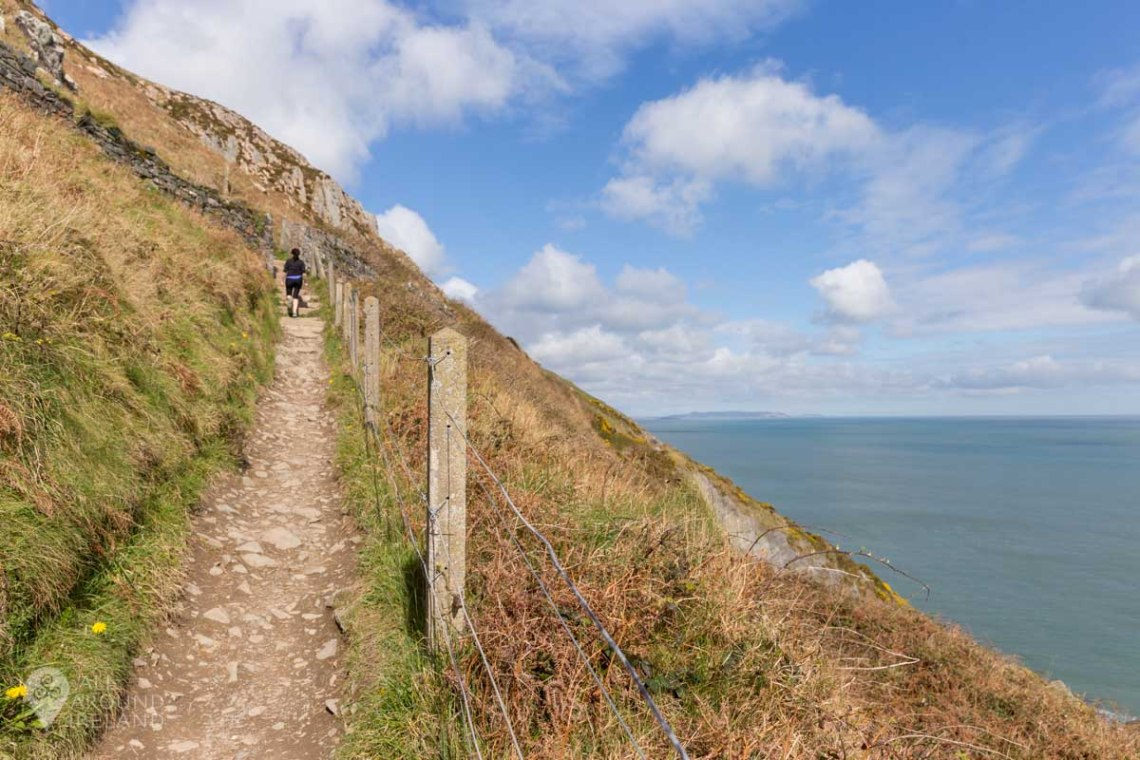 The cliff path on the Bray to Greystones cliff walk