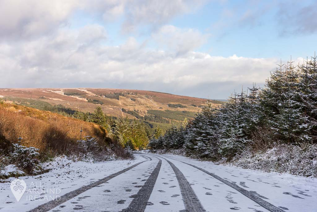 Footprints in the snow in the Slieve Bloom Mountains