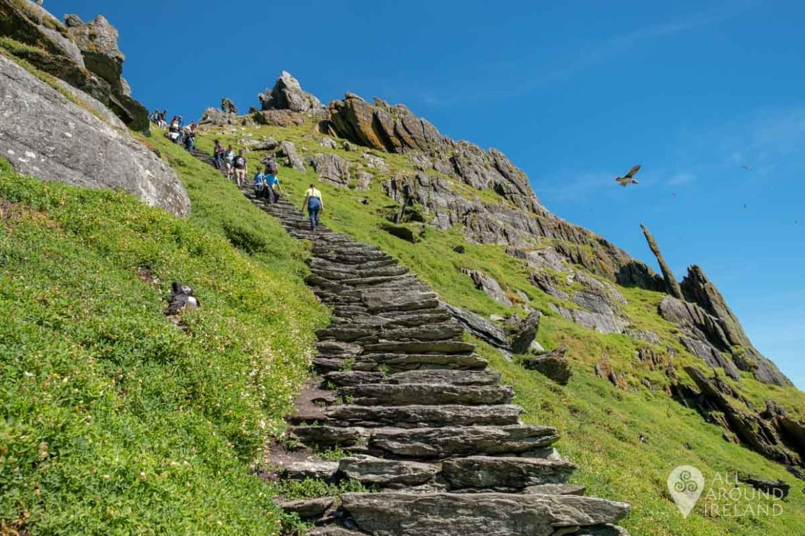 The steep incline to the monastery at the top of Skellig Michael