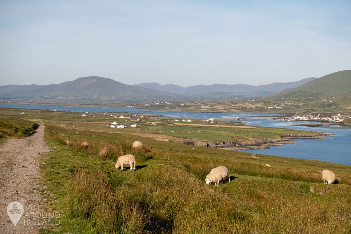 Looking back towards Portmagee as we climbed.