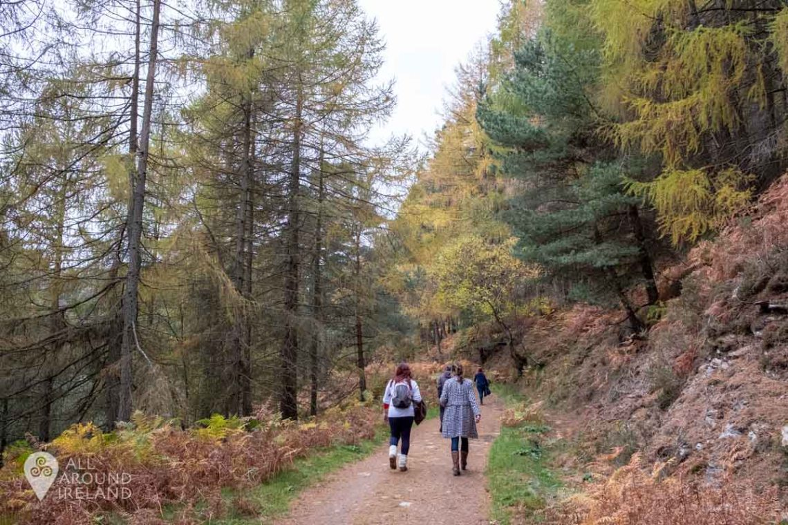 Beautiful autumn colours on display during our hike in Glendalough