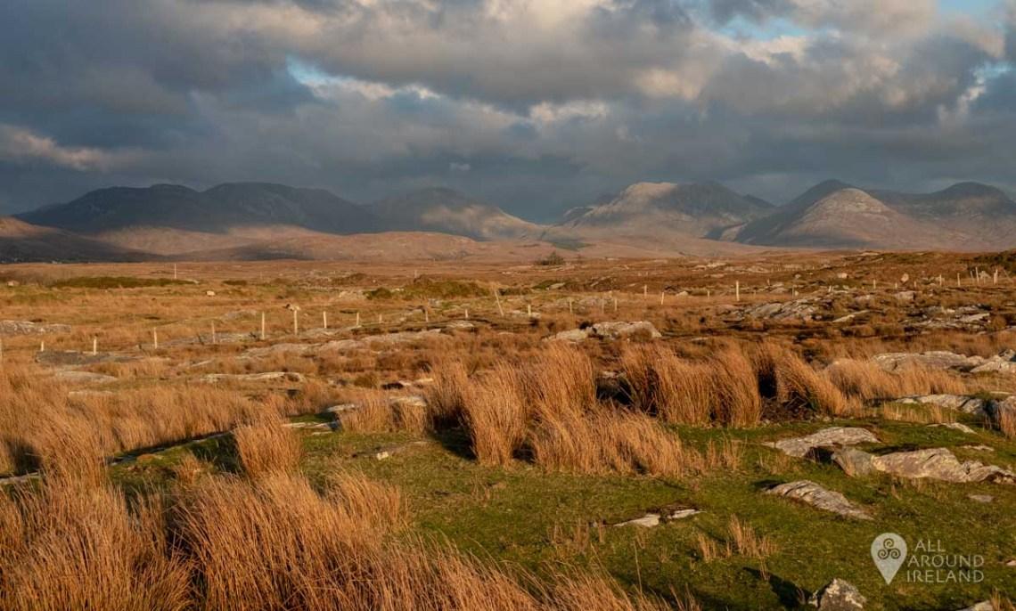 Golden light over Derrigimlagh bog with the Twelve Bens in the distance.