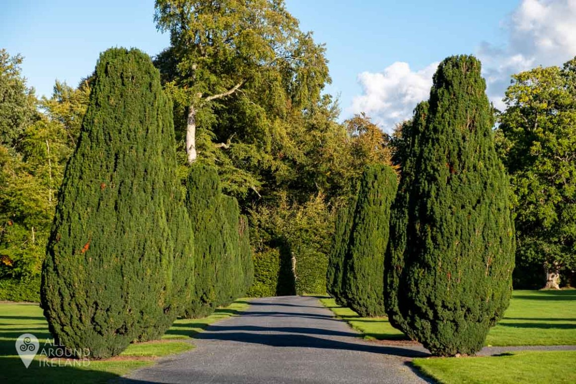 Tree-lined walkway in the gardens at Emo Court on a sunny day.