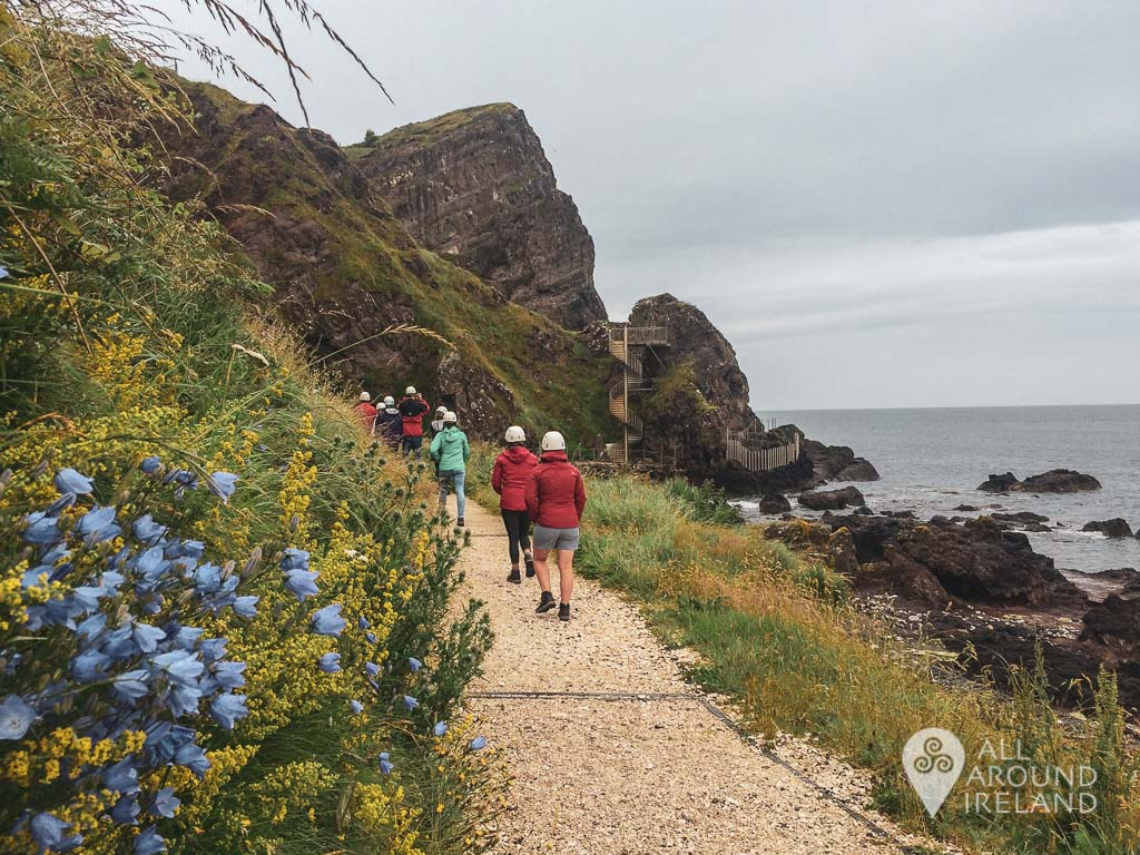 Walking towards the entrance of the Gobbins Path. Wildflowers and grasses line the path on the inland side. Ahead is a large basalt outcrop where the walk begins.