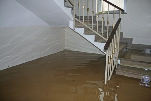 How to Assess Water Damage