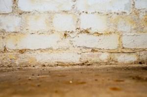 basement waterproofing all aspects