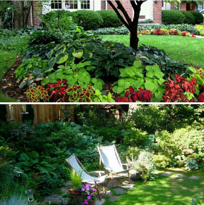 shady, landscape solutions