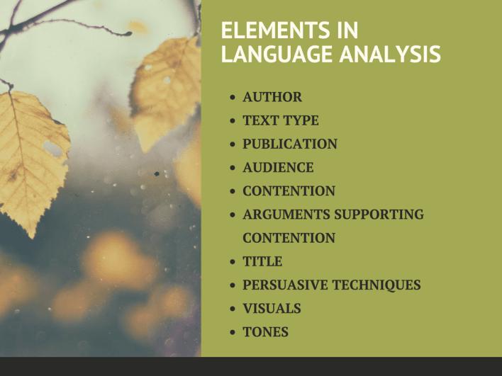 language-analysis-7