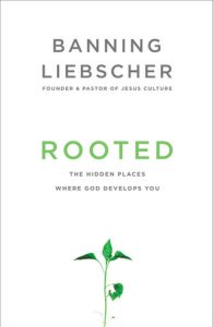 Rooted book review - Liebscher is honest in his writing, and includes personal examples throughout Rooted. He also includes plenty of Scriptural backing. This is a good read for a Christian, or someone who is interested in learning more about Christianity.