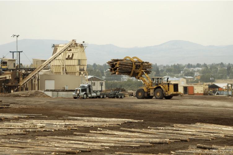 US Commercial Logging