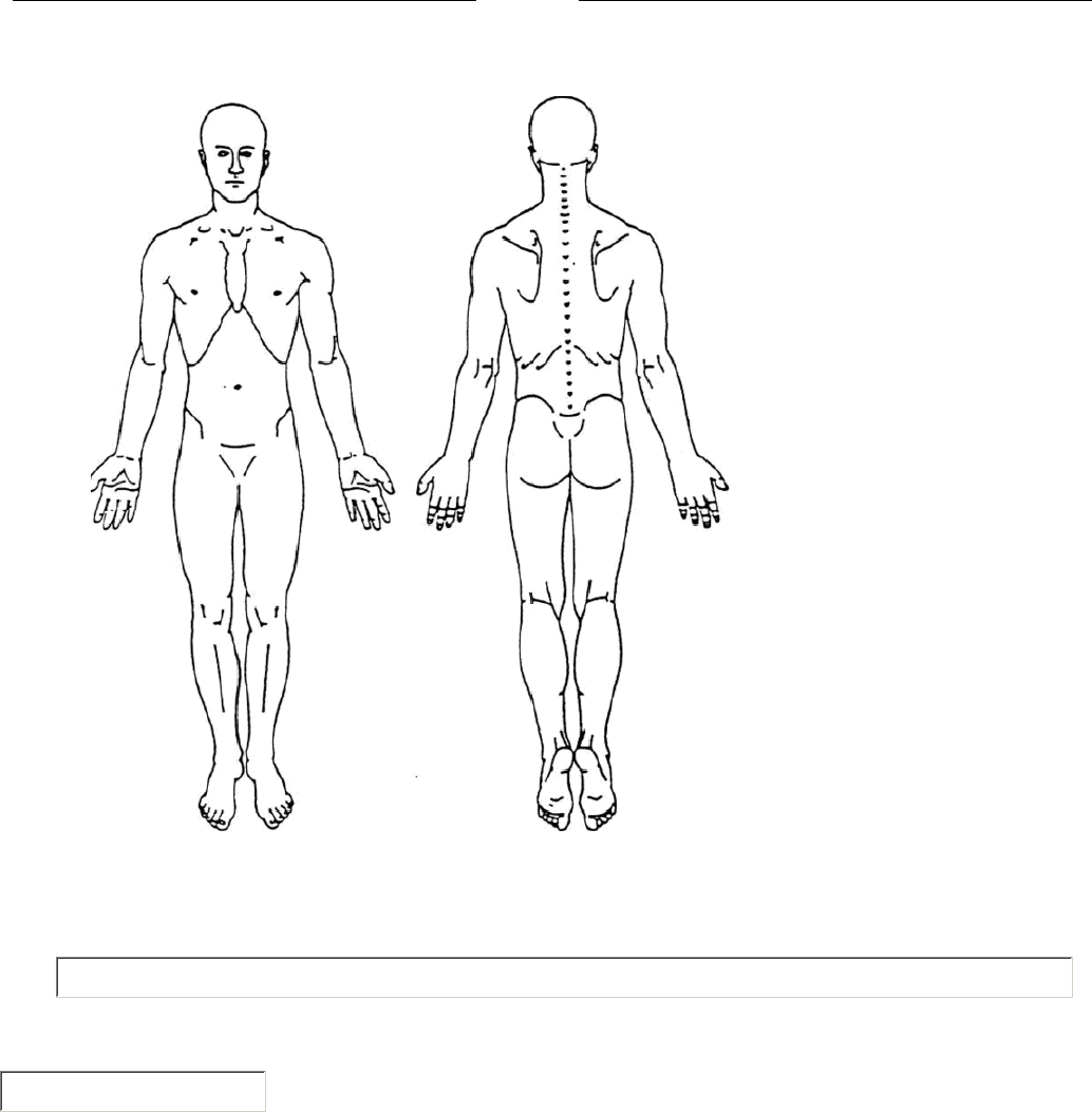 Preview Body Pain Chart