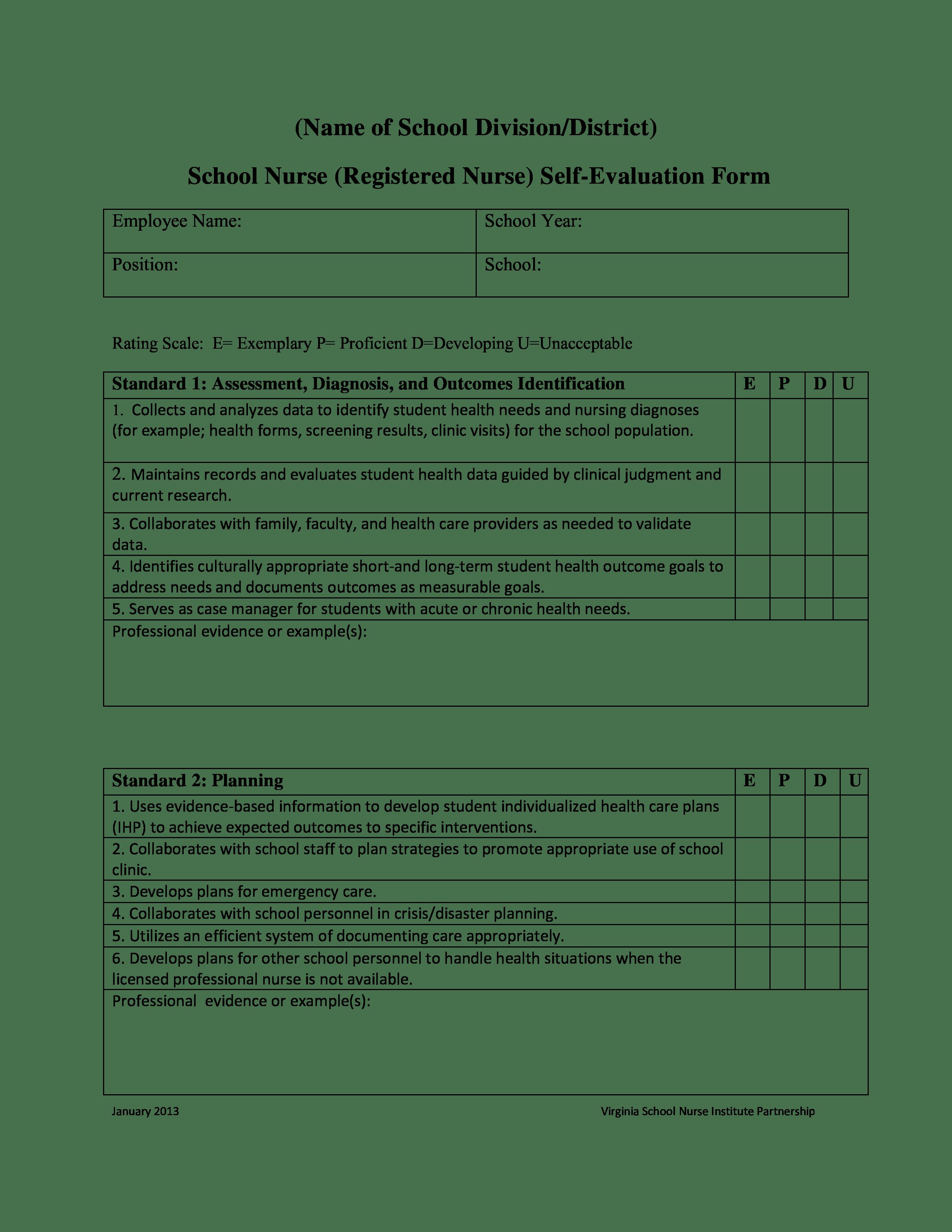 Nurse Self Evaluation Sample