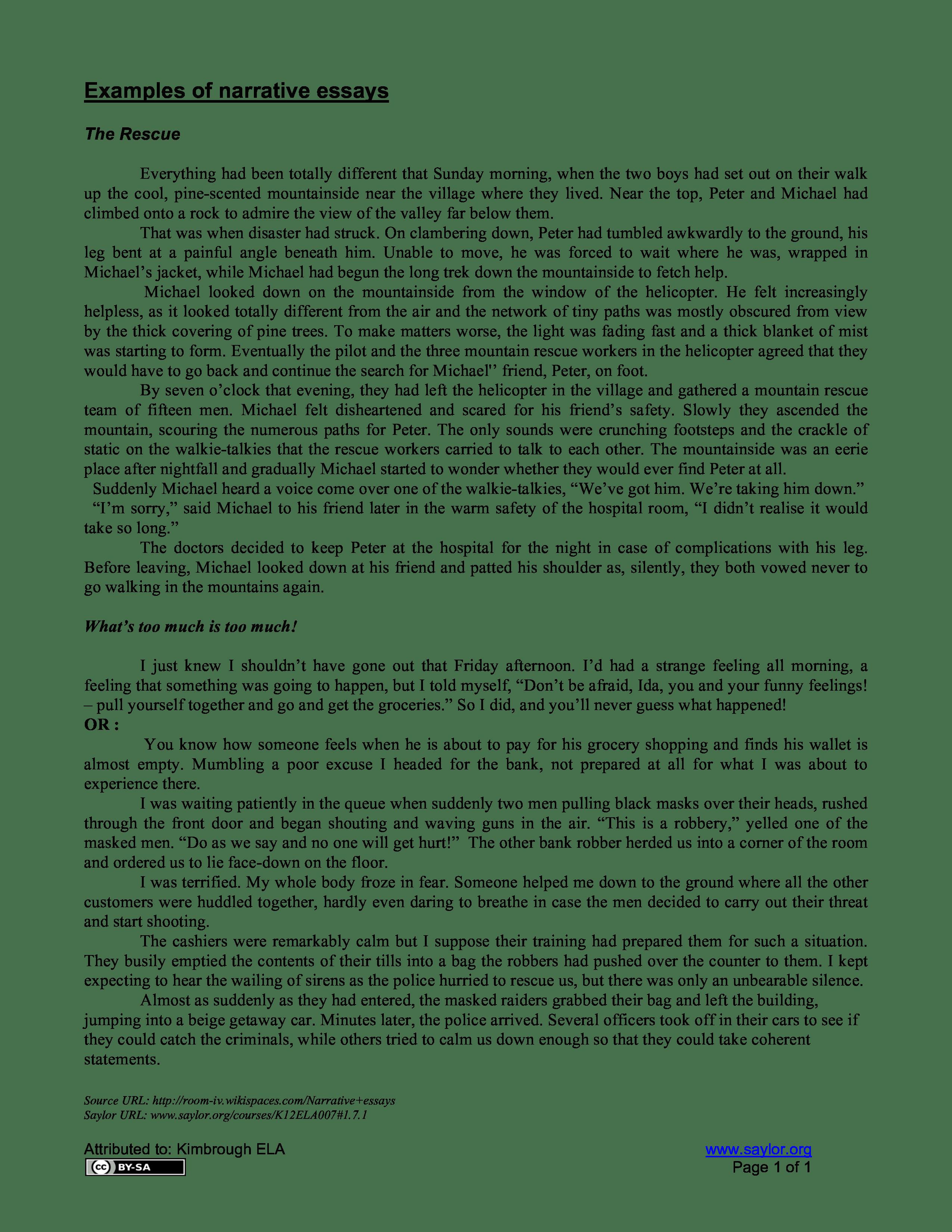 Personal Narrative Essay Sample
