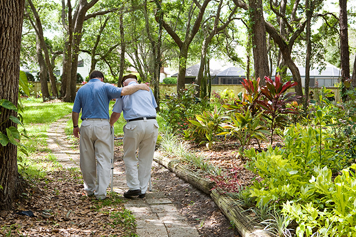 How Elder Law Can Help You