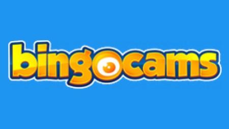 Bingcams_250x250