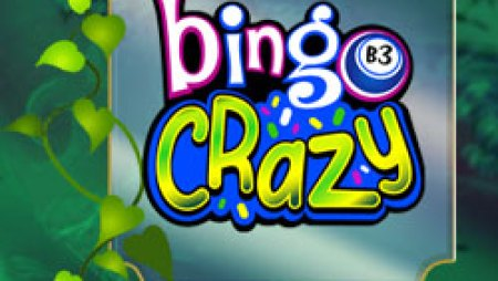 bingocrazy250
