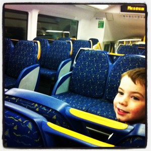 The Berry's Excellent Adventure - more train