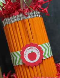 Teacher Pencil Vase