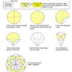 Carambola Flower Origami Diagram Meiosis Vs Mitosis Over 75 Free Paper Instructions At Allcrafts Dahlia Fold