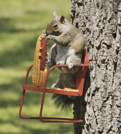 squirrel chair feeder christopher knight home diy feeders 6 ideas
