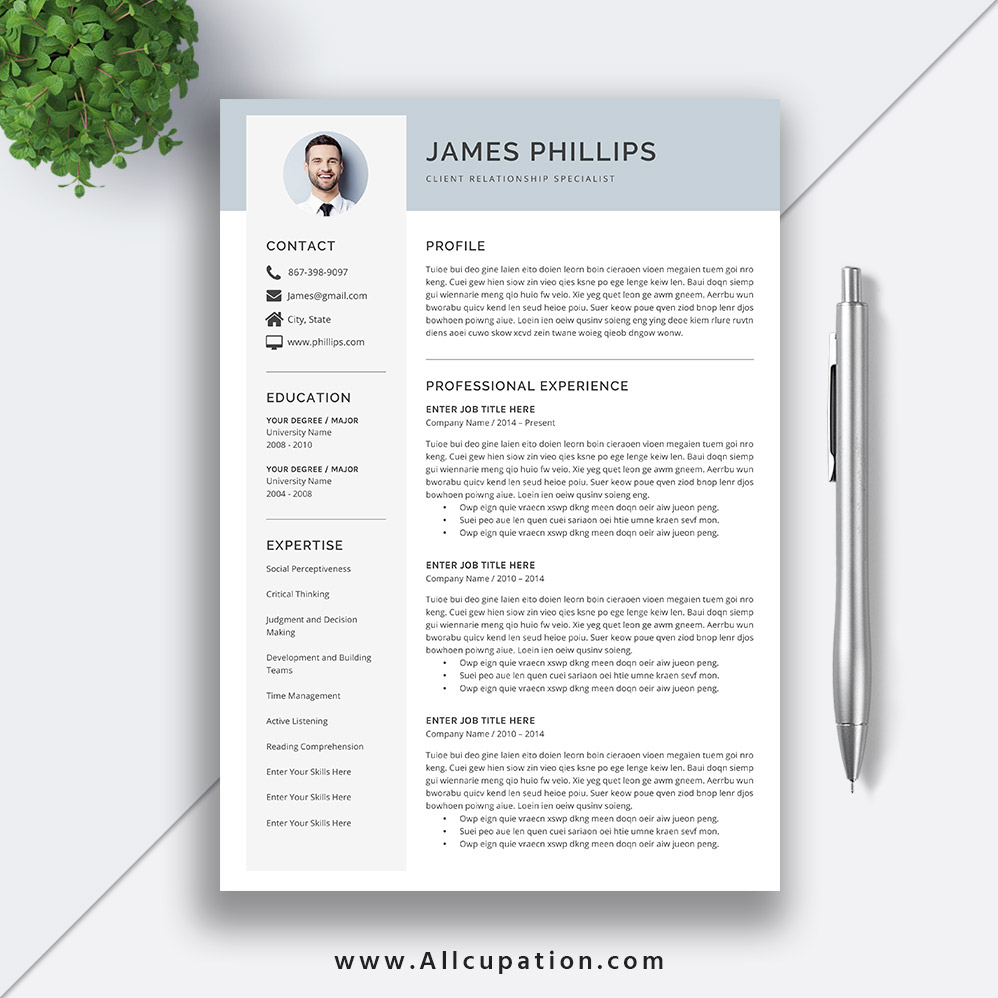 Simple Professional Resume Template 2019 Modern CV