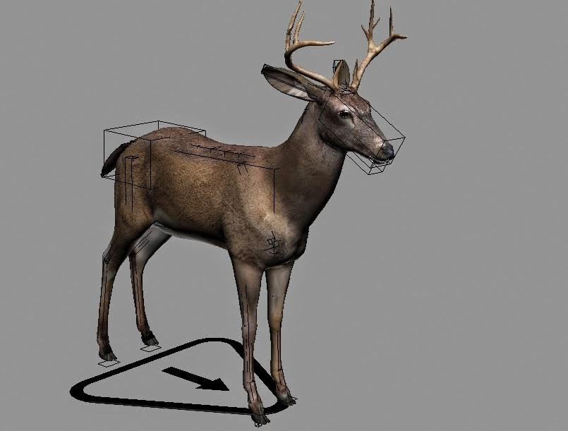Deer Rigged 3ds Max