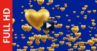 Gold Balloons Hearts Moving Up in Blue Background
