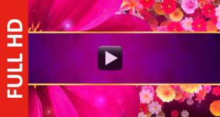Royalty Free Flower Title Introduction Video Background Effect HD Loop