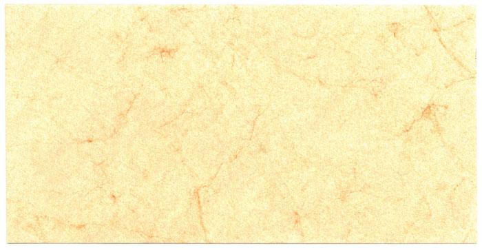 Briefumschlag 22x11cm creme Elefantenhaut ms24514501