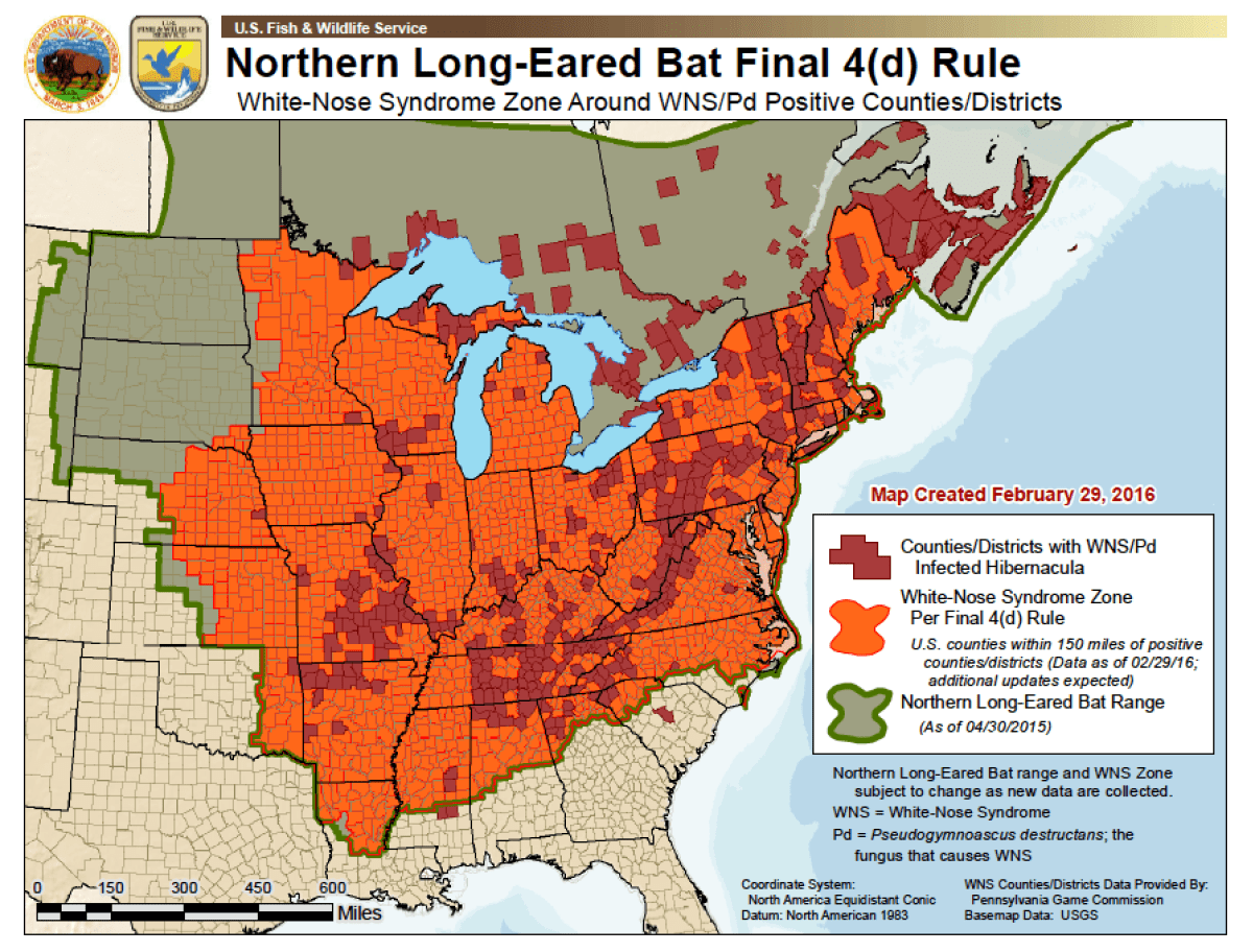 Graphic courtesy U.S. Fish and Wildlife Service