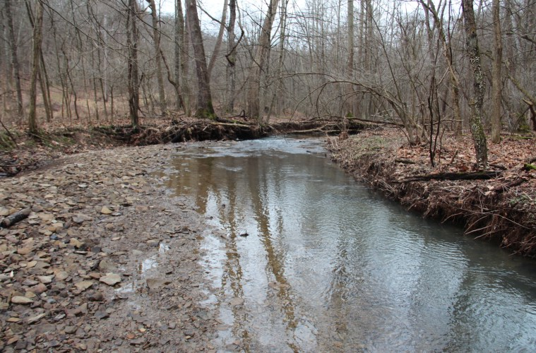 A stream inside Ryerson Station State Park; Photo: Reid R. Frazier