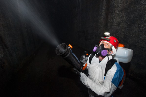 Greg Turner sprays polyethylene glycol in the tunnel in 2018. Pete Pattavina/US Fish and Wildlife Service