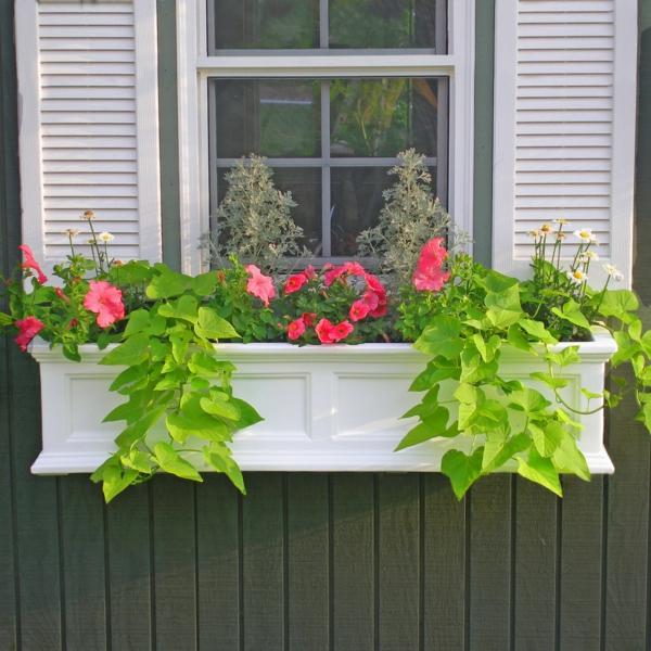 Blumenkasten fr Balkon  Verwandeln Sie Ihren Balkon in einen Garten