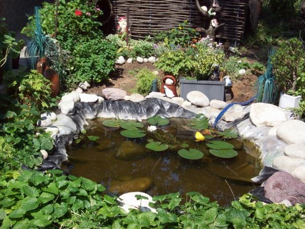 Wasserpflanzen in Ihrem Garten sorgen fr eine einmalige