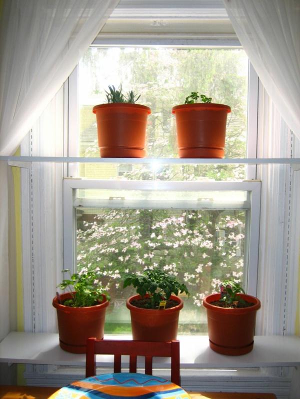 Fensterbank Deko mit Pflanzen die einen kleinen Garten erschaffen