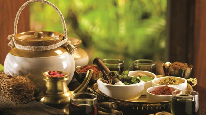 Ayurveda kochen Der Weg zur Selbstheilung