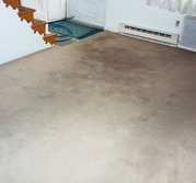 minneapolis carpet cleaning