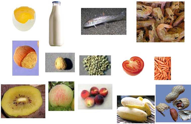 allergeni_alimentari