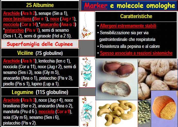 allergia_proteine_deposito