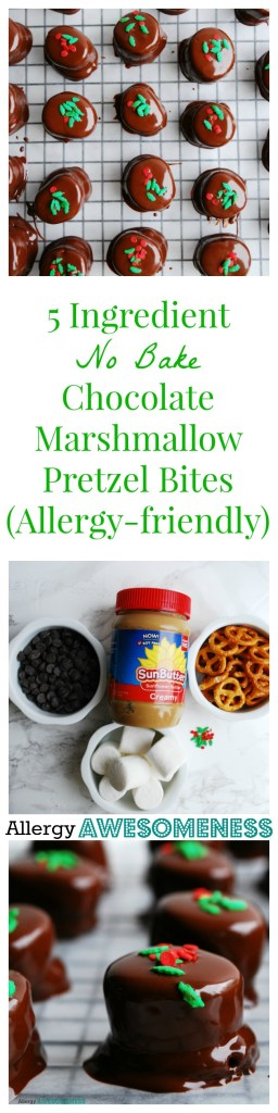 Allergy-friendly, 5 Ingredient, No Bake, Chocolate Marshmallow Pretzel Bites Dessert recipe by AllergyAwesomeness.com