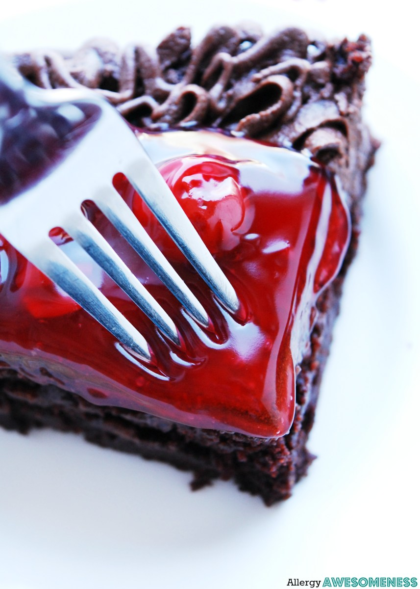 Gluten-free Vegan Double Cherry Chocolate Cake (Gluten, dairy, egg, soy, peanut & tree nut free; top 8 free)