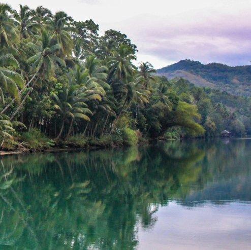 Der Fluss Loboc