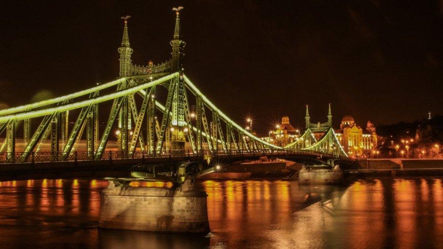 Die Freiheitsbrücke in Budapest