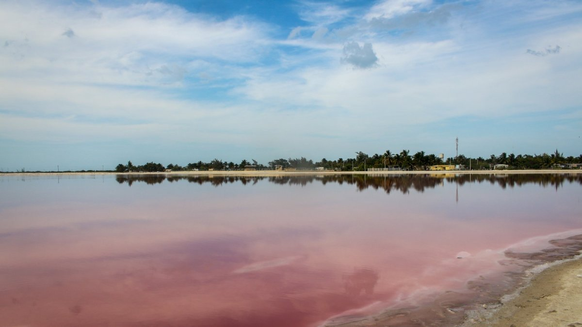 Las Coloradas: Ein Paradies in Pink
