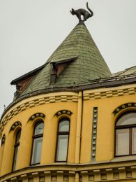 Katzenhaus in Riga